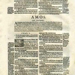Geneva – 1595 – AMOS 1:1-3:11