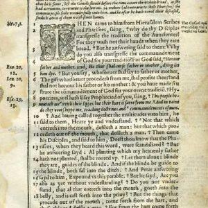 Douay-Rheims NT – 1600 – MATTHEW 15:1-39