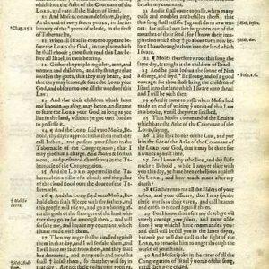 King James – 1619 – DEUTERONOMY 31:8-32:35
