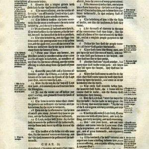 Geneva – 1595 – JOEL 1:6-3:12