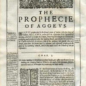 Douay-Rheims OT – 1635 – Haggai 1:1-4