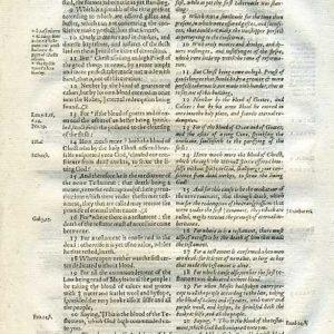 Rheims (Fulke's) – 1601 – HEBREWS 9:8-28