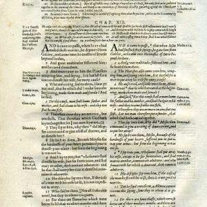 Rheims (Fulke's) – 1601 – MATTHEW 19:1-30 (all)
