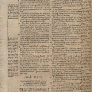 Geneva Bible – 1569 – ISAIAH 47:7-49:21