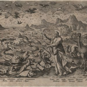 Creation! Birds and Fishes – 1584