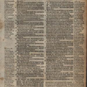 Geneva – 1581 – GENESIS 11:7-14:9